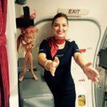 Ce înseamnă să fii însoțitoare de zbor? Livia Velnic în avion